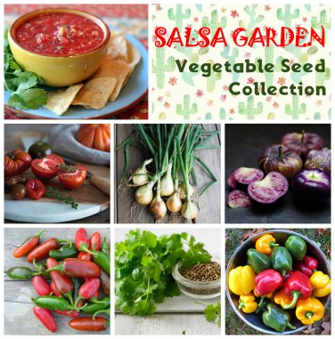 Nutritious Organic Salsa Vegetable Seed Collection - 6 Varieties