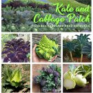 Organic Kale and Gabbage Patch Heirloom OP Vegetable Seed Collection - 6 Varieties