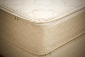 "9"" Organic Twin Pillowtop Mattress - Atlantis"
