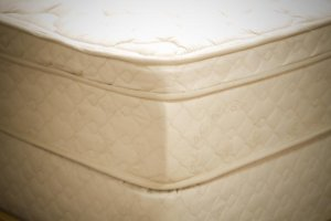 "10"" Organic Twin Deluxe Pillowtop Mattress - Sagittarius"