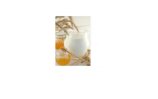 Milk and Honey Soap