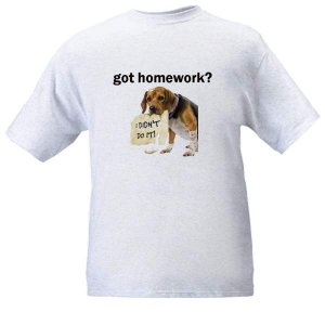 got homework? Ash Grey T-Shirt