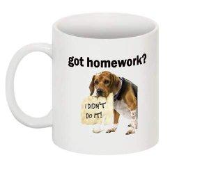 got homework?  Mug