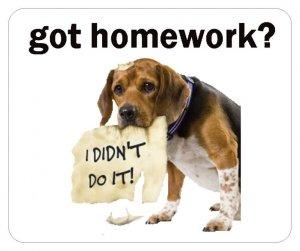 SALE - got homework? Mousepad