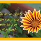 You are in God's heart today, and your life is in His hands - 10 postcards