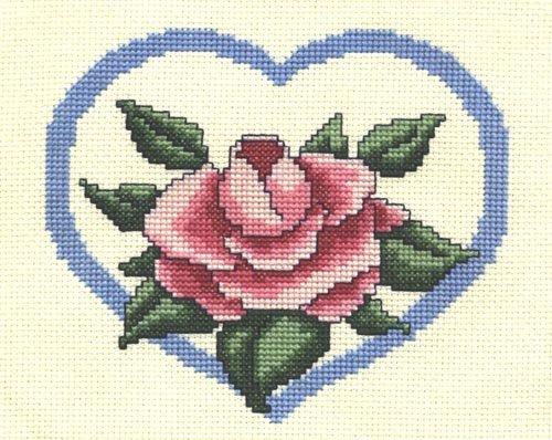 Hepburn Pink Rose