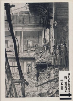 Propaganda. After the Reichstag fire.
