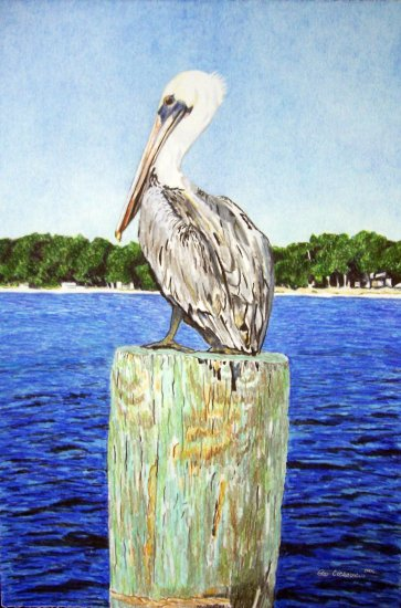 The Pelican Watch