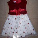 Gorgeous Toddler Girls BONNIE JEAN Rose Dress 2/2T