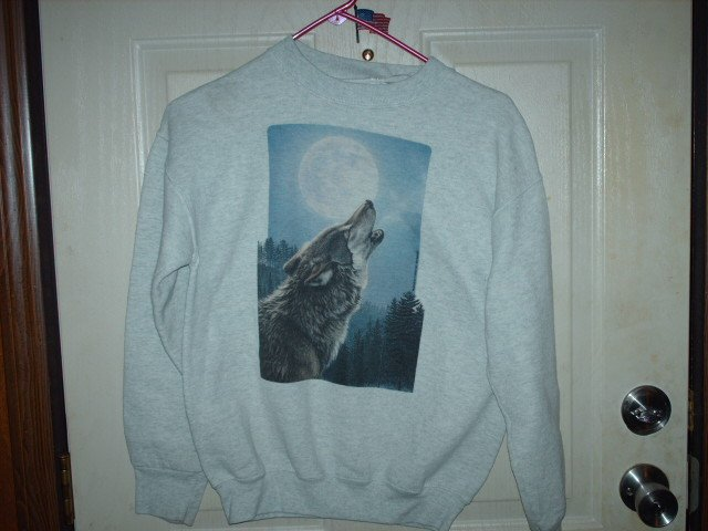Boys Gently Worn Sweatshirt with Wolf Picture Size Small