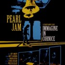 Pearl Jam IMAGINE IN CORNICE Original Concert Film Poster 2' x 3' Rare 2007