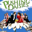 PUSHING DAISIES Poster * LEE PACE & ANNA FRIEL * ABC 4' x 6' Rare 2008 Mint
