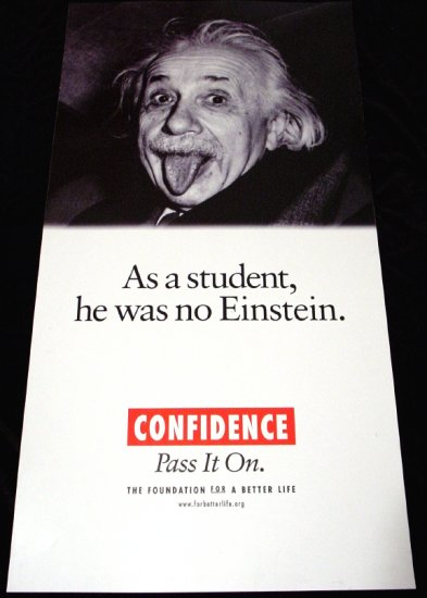 Albert Einstein * CONFIDENCE * Original Poster 2' x 4' Rare 2007 New