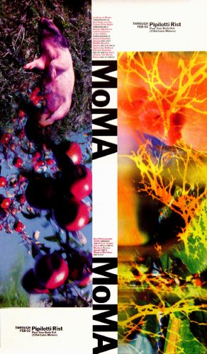 MOMA Original Art Exhibit Poster * PIPILOTTI RIST * 2' x 3' Rare 2008 Mint