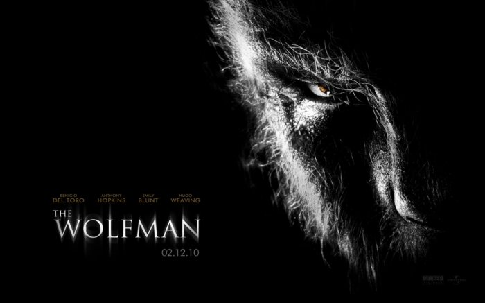 THE WOLFMAN Original Movie Poster * BENICIO DEL TORO * 4' x 6' Rare 2010 NEW