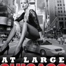 "CHICAGO * At Large * Broadway Poster 14"" x 22"" Rare 2010 NEW"