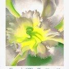 Georgia O'Keeffe Original Art Poster * An Orchid * 2' x 3' Rare 1989 Mint