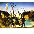 "Salvador Dalí Original 4 Poster Art SET * Swans Reflecting Elephants * 16""x20"" Rare 1987 Mint"