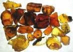 Tibetan Amber Premium Fragrance Oil