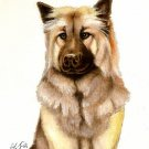 ★ Original Oil DOG Portrait Painting Artwork EURASIER ★