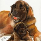 * Original Oil DOG Portrait Painting LEONBERGER w PUPPY