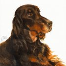 ★ Original Oil DOG Art Portrait Painting GORDON SETTER