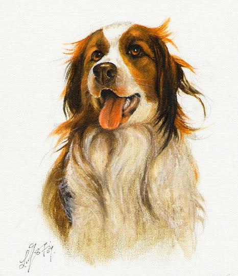 � Original DOG Art Oil Portrait Painting KOOIKERHONDJE