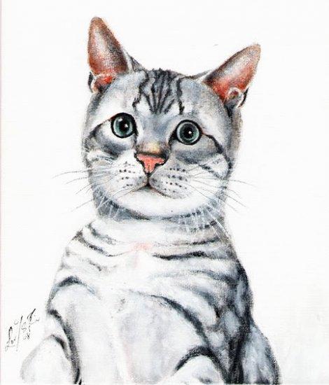 � Original Oil Portrait Painting Art SILVER TABBY CAT �
