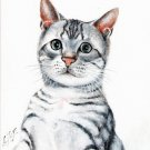 ♥ Original Oil Portrait Painting Art SILVER TABBY CAT ♥