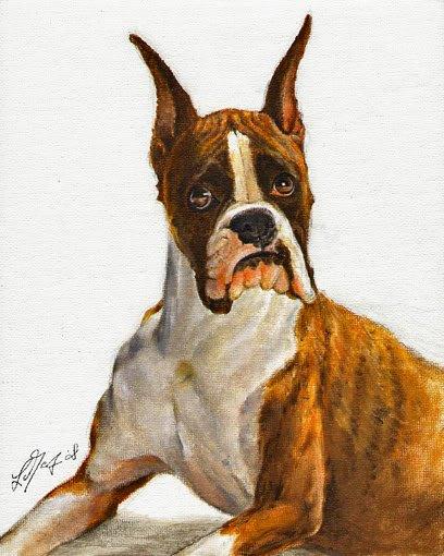 � Original Oil DOG Portrait Painting Art BOXER Artwork