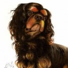 Original Oil DOG Portrait Painting KING CHARLES SPANIEL