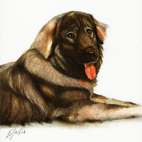 � Original Oil DOG Portrait Painting Art SARPLANINAC �