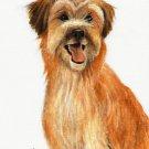 ★ Original Oil DOG Portrait Painting PYRENEAN SHEEPDOG