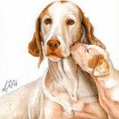 ★ ORIGINAL Oil DOG Portrait Painting ENGLISH POINTER ★