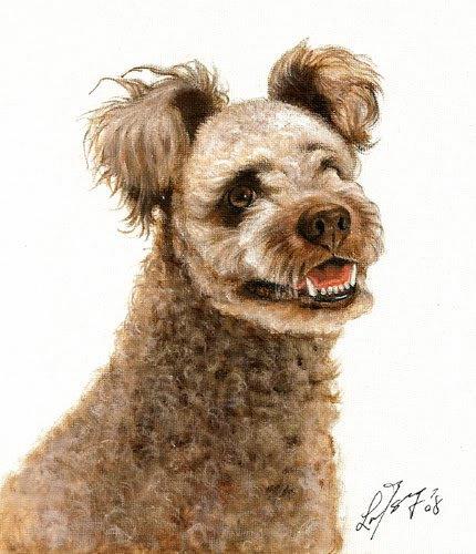 � Original Oil Art DOG Portrait Painting Artwork PUMI �
