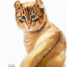 ★ Original Oil Portrait Painting Art AMERICAN CURL CAT