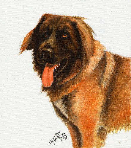 � Original Oil DOG Portrait Painting Art LEONBERGER �