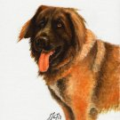 ★ Original Oil DOG Portrait Painting Art LEONBERGER ★