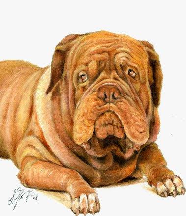 � Original Oil DOG Portrait Painting BORDEAUX MASTIFF �