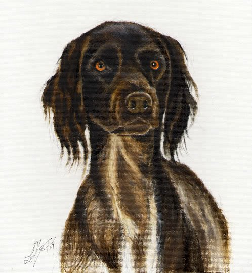 � Original DOG Oil Portrait Painting MUNSTERLANDER Art