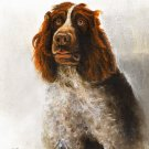 ★ Original Oil DOG Portrait Painting GERMAN SPANIEL Art