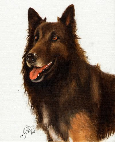 � Original Oil DOG Portrait Painting BELGIAN SHEPHERD �