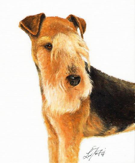 � Original Oil DOG Portrait Painting LAKELAND TERRIER �