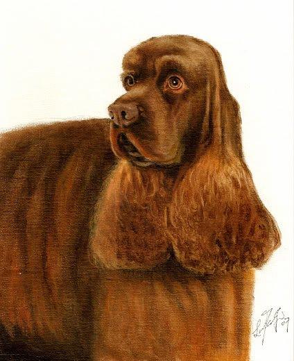 �Original DOG Portrait Painting AMERICAN COCKER SPANIEL