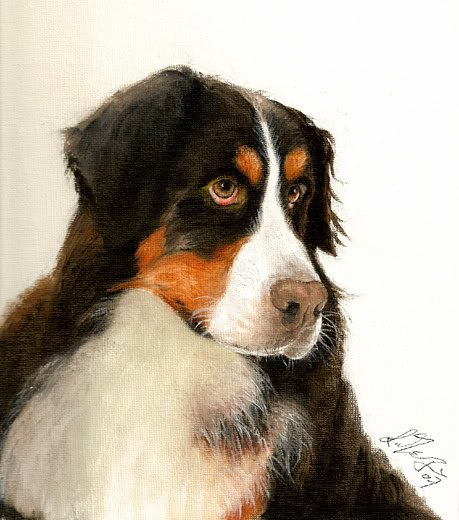 � Original Oil Portrait Painting BERNESE MOUNTAIN DOG �