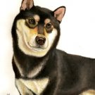 ★ Original Oil DOG Portrait Painting Japanese SHIBA INU