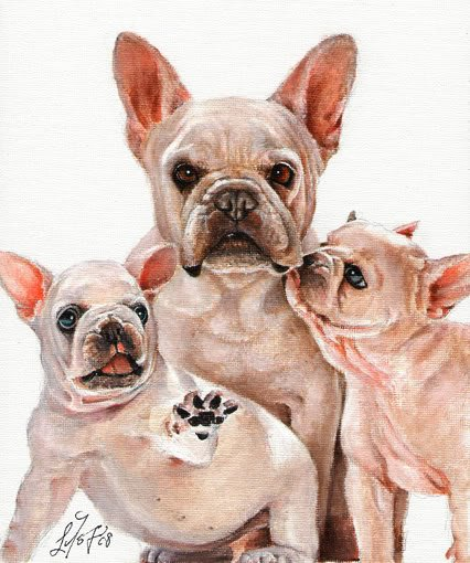 * Original Oil DOG Portrait Painting Art FRENCH BULLDOG