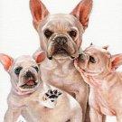 * Original Oil DOG Portrait Painting Art FRENCH BULLDOG