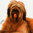 ★ Original Oil DOG Art Portrait Painting BRIARD Artwork