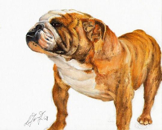 � Original Oil DOG Portrait Painting BULLDOG Artwork �